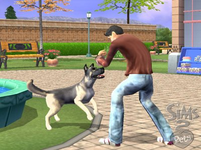 Sims  Cats And Dogs Game Is Slower
