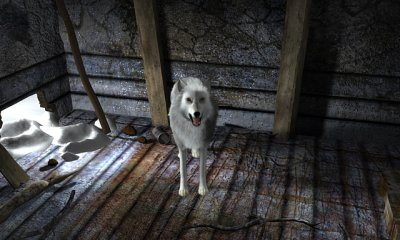 Nancy Drew: The White Wolf of Icicle Creek screenshots