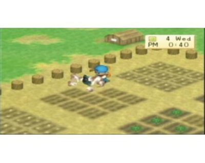Harvest Moon: Boy & Girl PSP screenshots