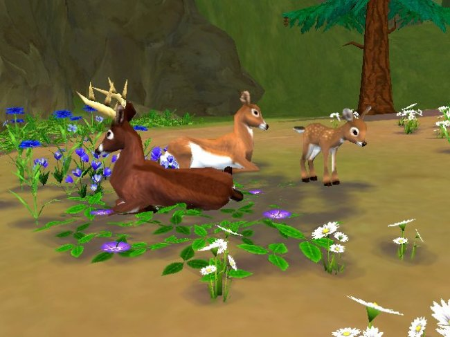SimAnimals Wii screenshots