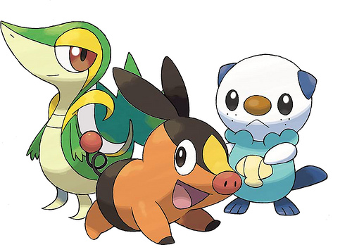 Pokemon Black Version - NDS Image