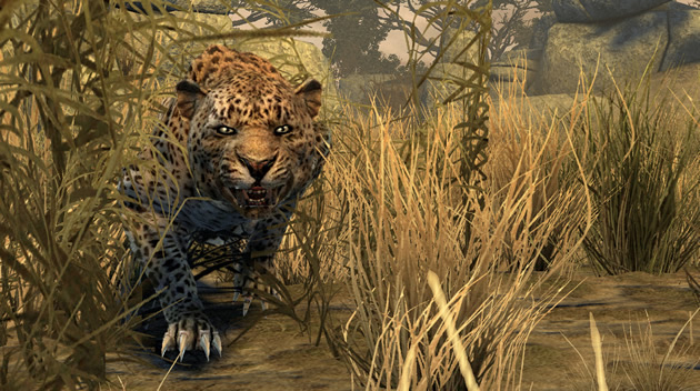 Cabelas Dangerous Hunts 2011 Image