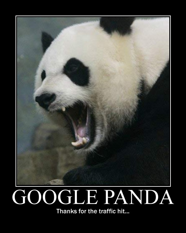Google Panda Motivational Poster; Google Panda: thanks for the traffic hit