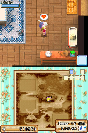Harvest Moon: Grand Bazaar - NDS Screenshot - 89482