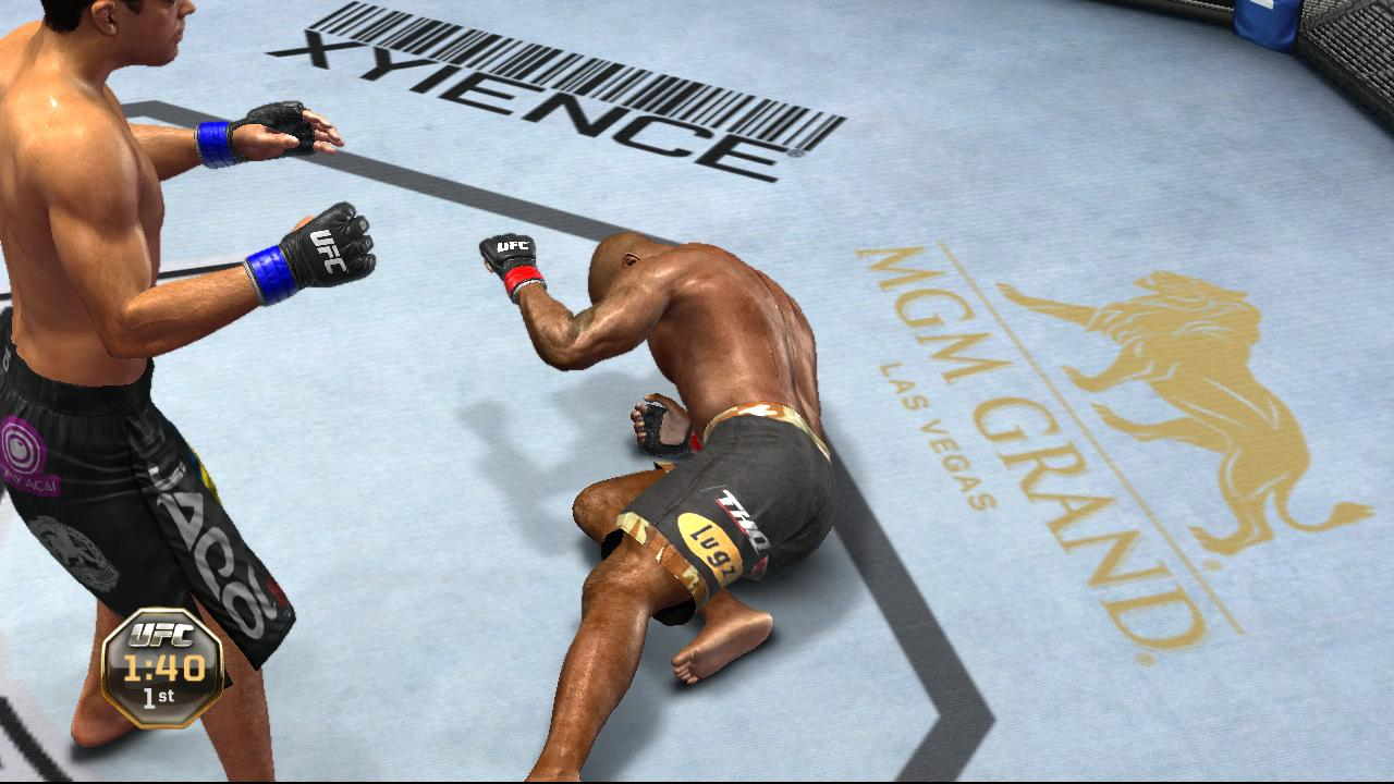 UFC Undisputed 2010 Screenshot - 88607