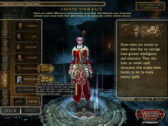 Dungeons & Dragons Online Client Downloader Standard Quality