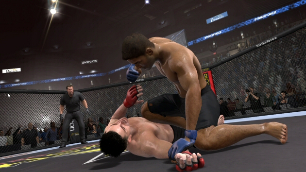 EA Sports MMA - Feature