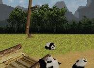National Geographic: Panda Image