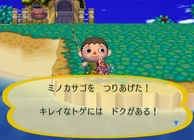 Animal Crossing: City Folk Image