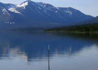 Reel Fishing: Angler's Dream Image