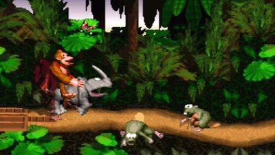 Donkey Kong Country  - 1024405