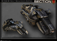 Section 8 Image
