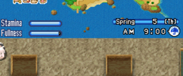 Harvest Moon: Sunshine Islands - Feature