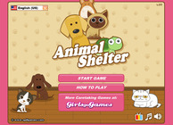 Animal Shelter Image