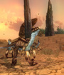 EverQuest II® Sundered Frontier Image