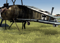Rise of Flight: Iron Cross Edition Image
