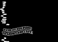 101 Dolphin Pets Image
