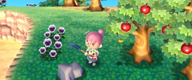 Animal Crossing 3DS - Feature