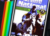 Grand National Image