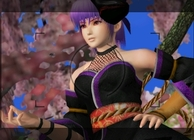 Dead or Alive: Dimensions Image