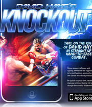 David Haye's Knockout Boxart