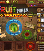 Fruit Ninja Frenzy Image