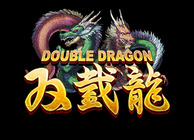 Double Dragon iPhone Image