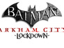 Batman: Arkham City Lockdown Image