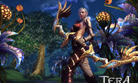Article_list_tera_screenshot_archer-highelf