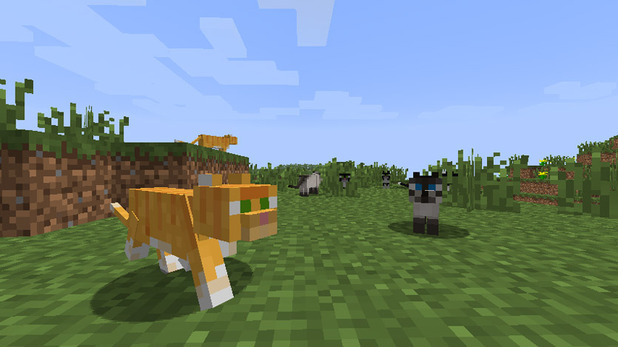 Minecraft Screenshot - 1105697