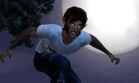 Article_list_ts3_supernatural_announce_werewolf