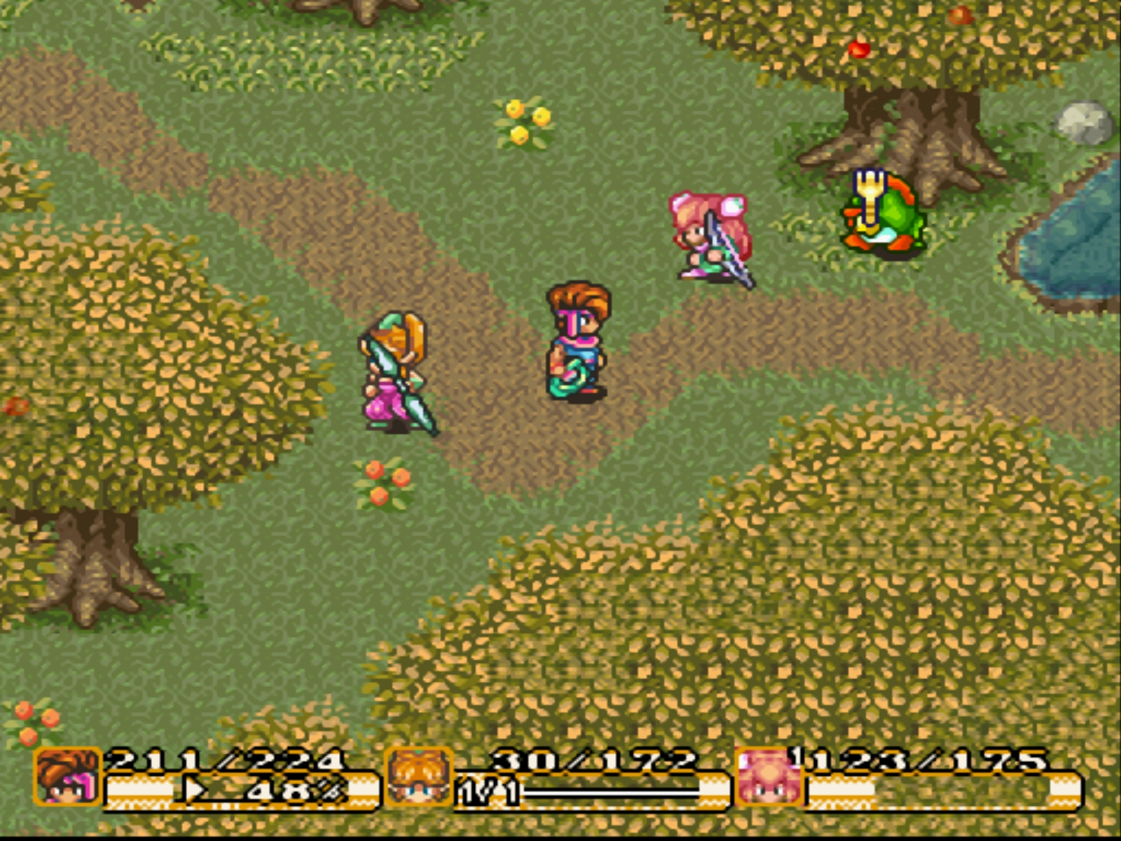 Secret of mana controls