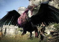 Dragon's Dogma Bird