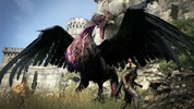 Dragon&#x27;s Dogma Bird