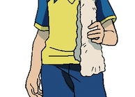 Inazuma Eleven Strikers Image