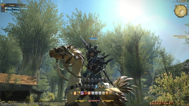 A Realm Reborn Chocobo