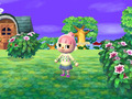 Hot_content_news-animalcrossing-3ds