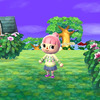 Animal Crossing 3DS Screenshot - Animal Crossing for 3DS