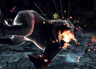 Tekken Tag Tournament 2 Wii U Edition Image