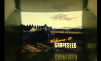 Article_list_gta-5-grapeseed
