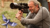 francis lawrence mockingjay