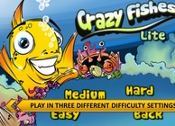 Crazy Fishes Image