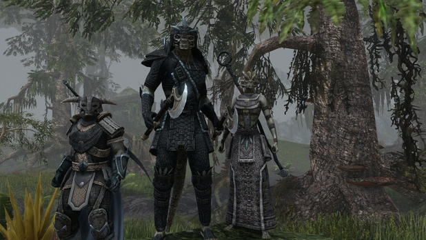 The Elder Scrolls Online Screenshot - 1127461