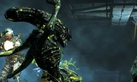 Article_list_aliens_colonial_marines_survivor