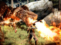 Hot_content_news-dragons-dogma