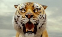 Review: Life of Pi shows beauty, says too much Image