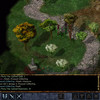 Baldur's Gate: Enhanced Edition Screenshot - Baldur's Gate: Enhanced Edition