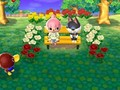 Hot_content_animal_crossing_new_leaf_-_3ds