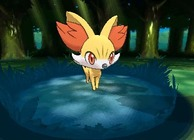 Fennekin Pokemon X and Pokemon Y
