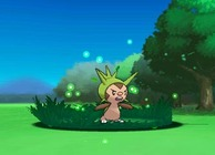 Chespin Pokemon X and Pokemon Y